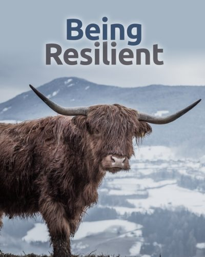 be_resilient-450x600