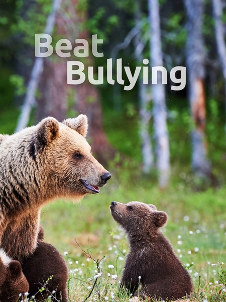 bullying-450x600