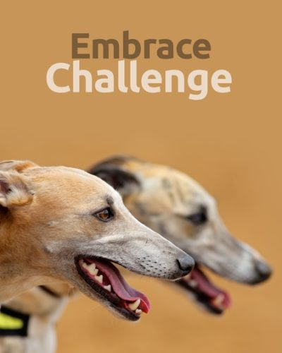 challenge-450x600