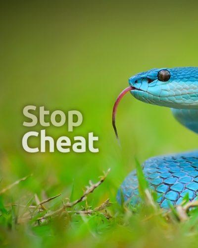 etd_cheat-450x600