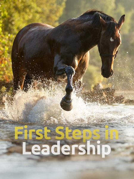 first_lead-450x600