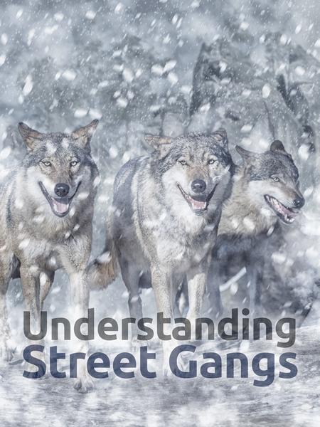 gangs-450x600