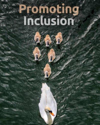 inclusion-450x600