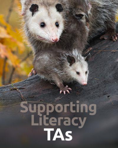 literacy_ta-450x600