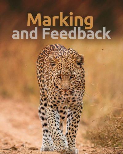 marking-450x600