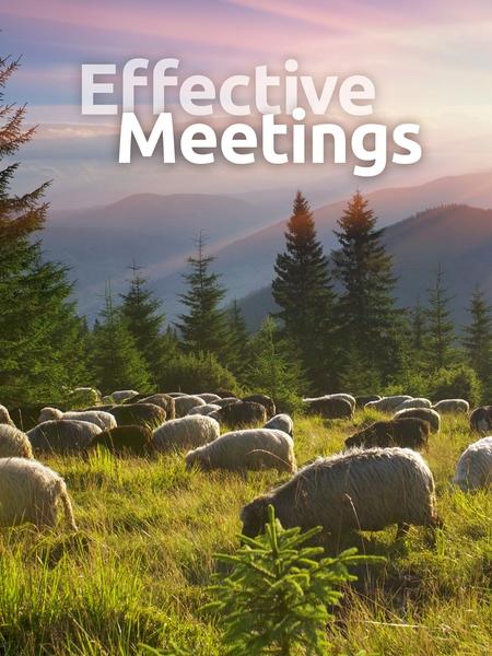 meetings-450x600