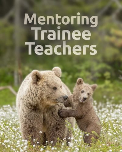 mentor_tt-450x600