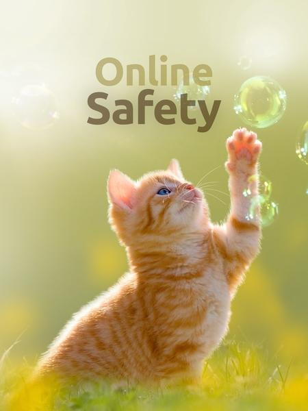 online_safe-450x600