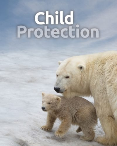 protect-450x600