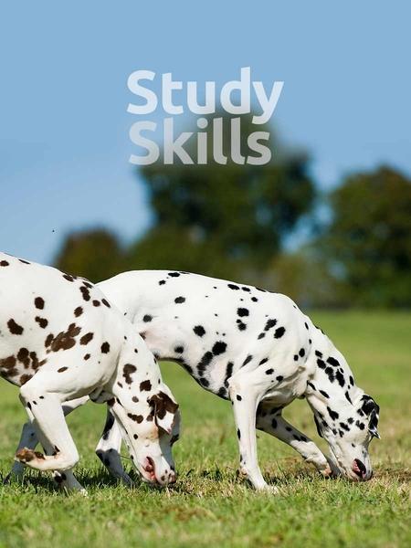 study_skills-450x600