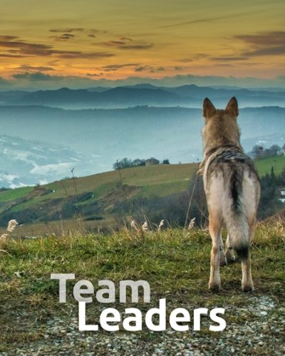team_lead-450x600