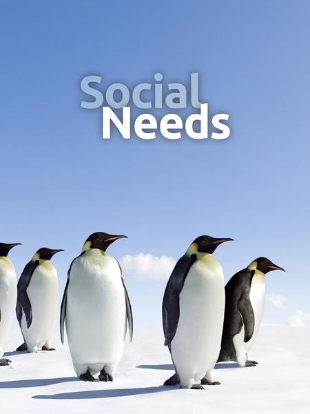 utc_social-450x600