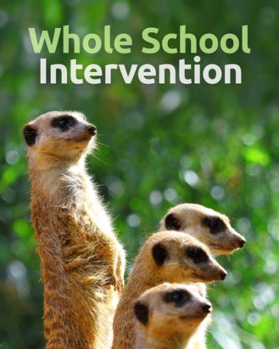 intervention-450x600