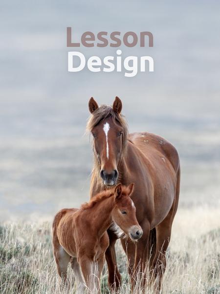lesson_design-450x600